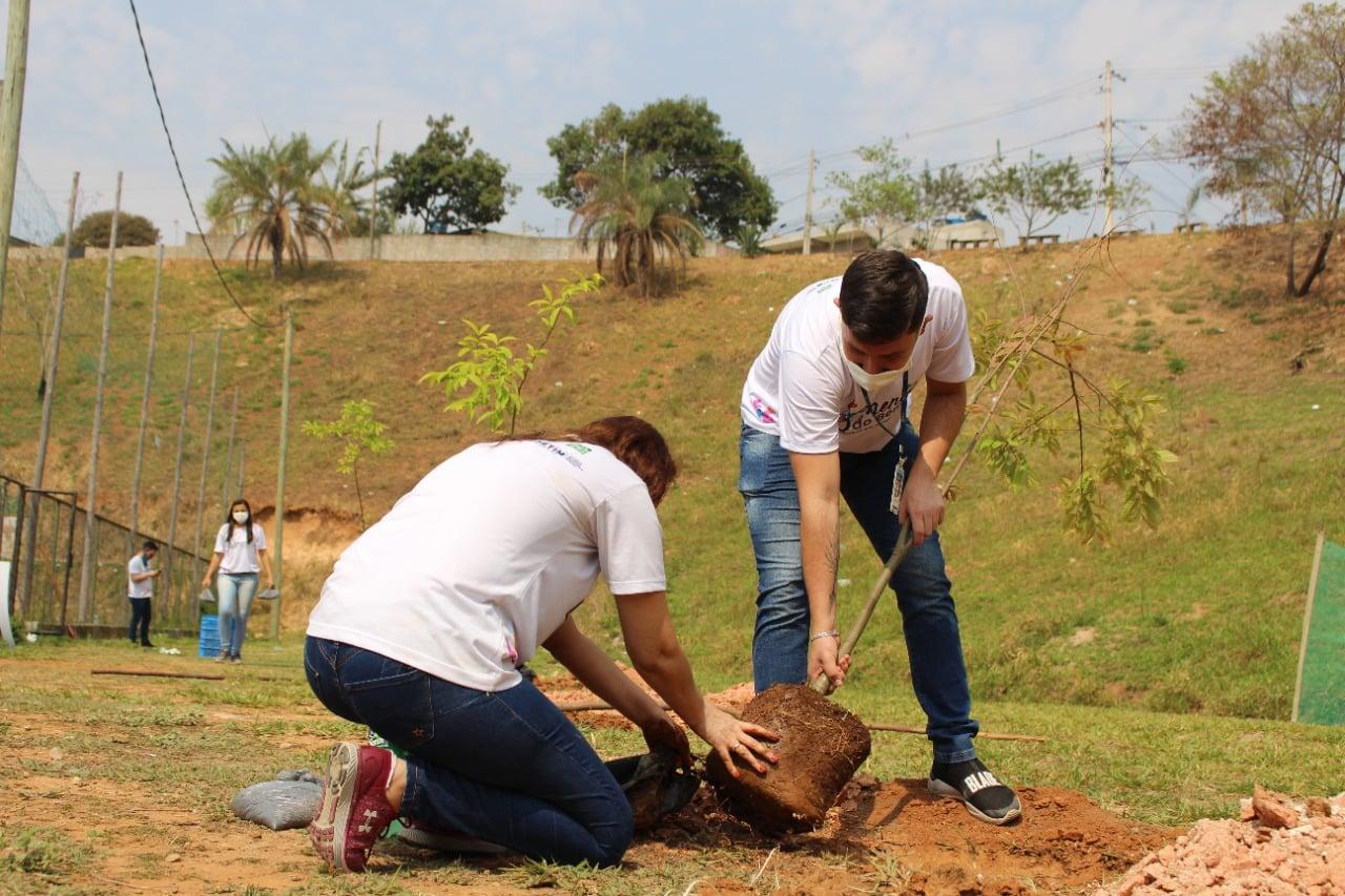 Semmad faz ação de plantio de árvores no Citrolândia - Foto Prefeitura de Betim Divulgação